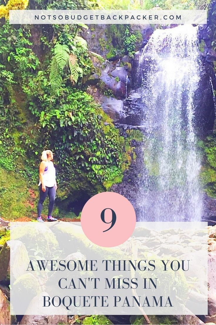 From hot springs to fantastic hikes and some of the world's best coffee here are all the things to do in Boquete Panama before you leave. Best things to do in Boquete Panama, Caldera Hot springs, what to do in boquete panama, boquete travel, travel boquete panama, boquete panama travel, boquete panama activities, where to stay in boquete panama, travel to boquete panama, Boquete hostels, Boquete Panama Hotels, Panama Boquete Coffee, Geisha coffee