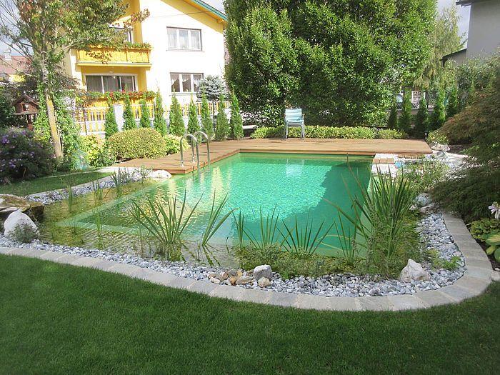 Nachmittagsstimmung Beim Naturpool Garten Natur Pool Naturschwimmbecken