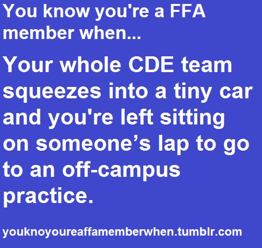 This reminds me of the great Cenex run of 2011... One Ford Focus, one officer team. FFA <3