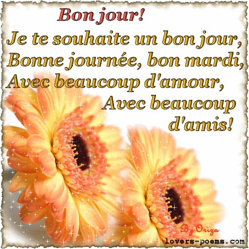 Bonjour! Je te souhaite un bonjour, bonne journée, bon mardi, avec beaucoup d'amour, avec beaucoup d'amis!