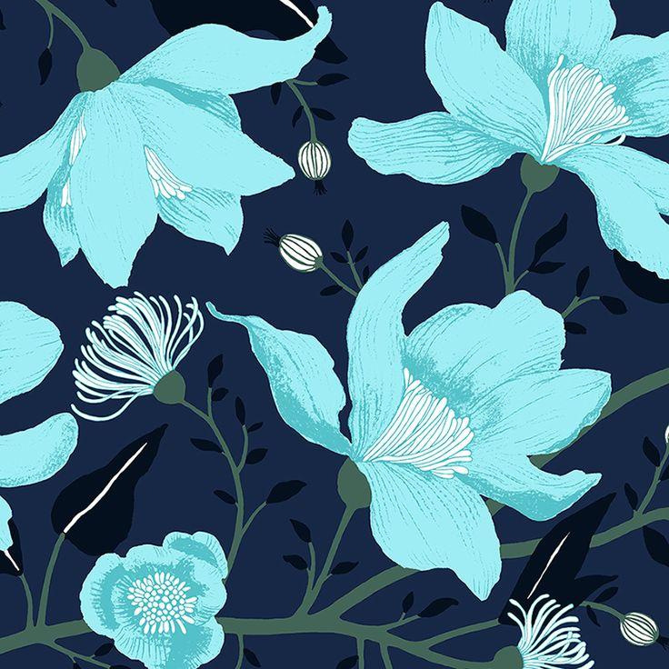 Clematis blue by Tanja Orsjoki - Wallpapers / Tapetit