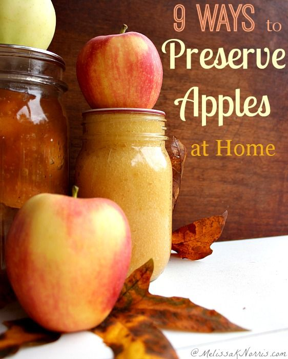 9 Ways to preserve apples at home. Frugal and easy ways to preserve apples for year round use and healthy homemade recipes, plus food storage. Read now to take advantage of the low apple prices and get your fall food storage in shape.