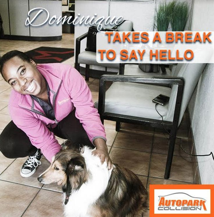 Dominique is always here to greet you! Bringing your dogs? She may greet them first 🐶💕  #dog #puppy #cars #car #welcome