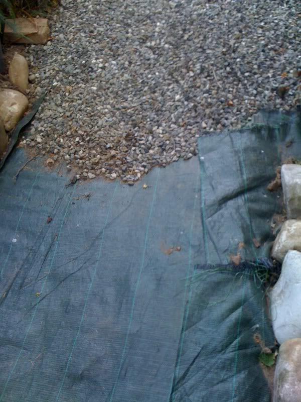 Un quadrato di giardino :: Discussione: Ghiaia decorativa in giardino, aiuole con sassi, vialetti, camminamenti in 'gravel garden' (1/2)