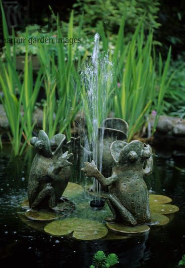 Frog fountain in small pond.  Photography by Harpur Garden Images