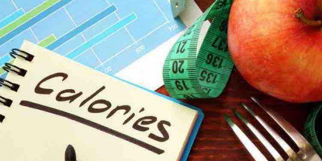 Calculez votre besoin calorique journalier pour perdre, prendre ou stabiliser votre poids