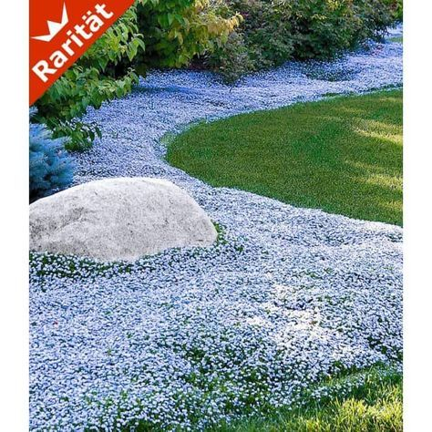 67 best Garten images on Pinterest Plants, Decks and Gardening