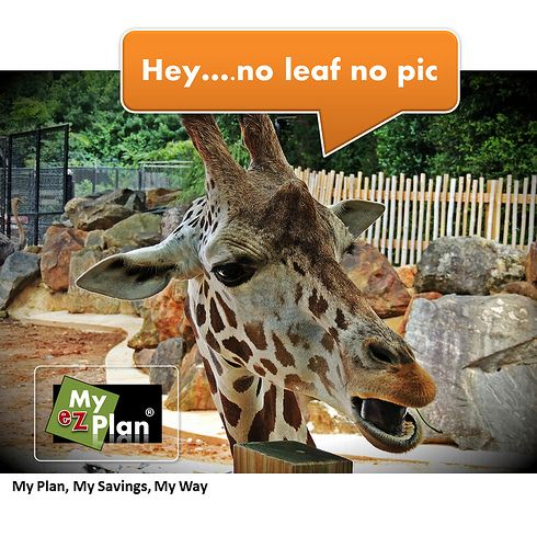Um ! Horrifying Animal | Learn about interesting places while you create your next vacation. Visit myezplan.com -  | Jaw Dropping Sports Action | Excursions in Granada  in Spain #cute #pets #naturelover #farm #animallovers