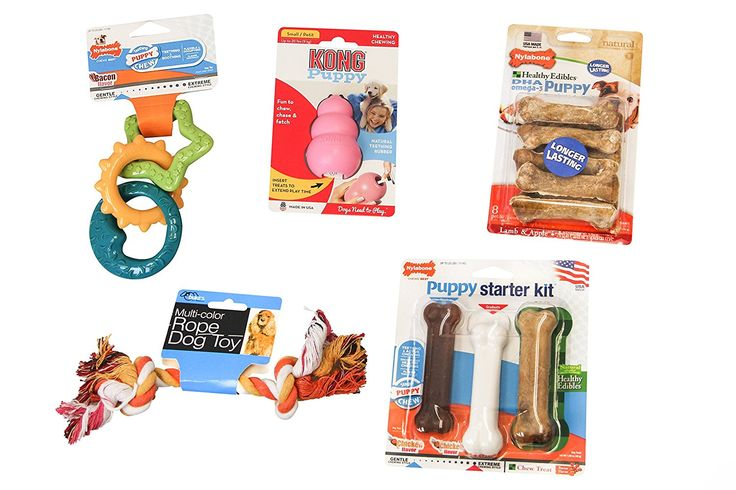 Puppy Toy and Teething Bundle - (1) Nylabone Puppy Teething Rings, (1) Kong Puppy Toy, (1) Nylabone Edibles DHA Omega-3 Puppy Lamb and Apple, (1) Nylabone Puppy Starter Kit, (1) Kole Knotted Rope Toy >>> Read more reviews of the product by visiting the link on the image. (This is an affiliate link and I receive a commission for the sales)