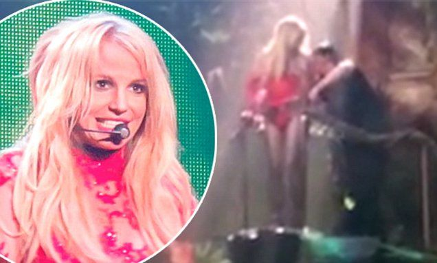 Britney Spears has to be rescued after getting stuck up tree at show