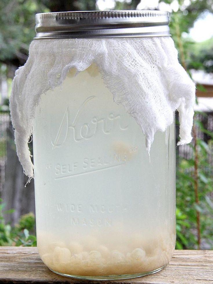 Recette kéfir boisson gourmand sain pour stabiliser flore intestinale  #recipe #kefir #milk #balance