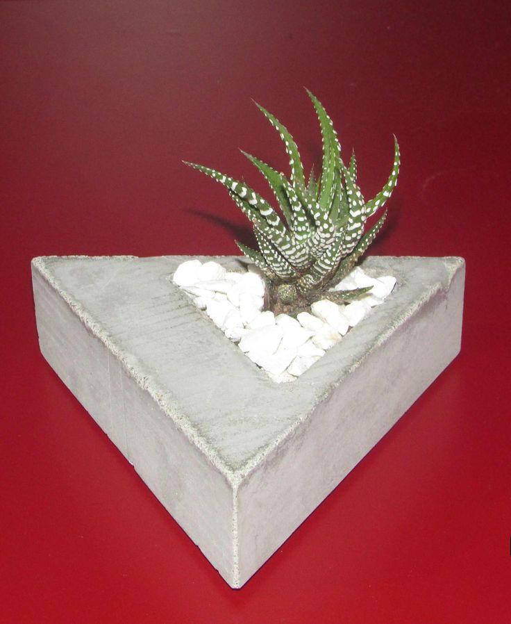 concrete for cactus - 1