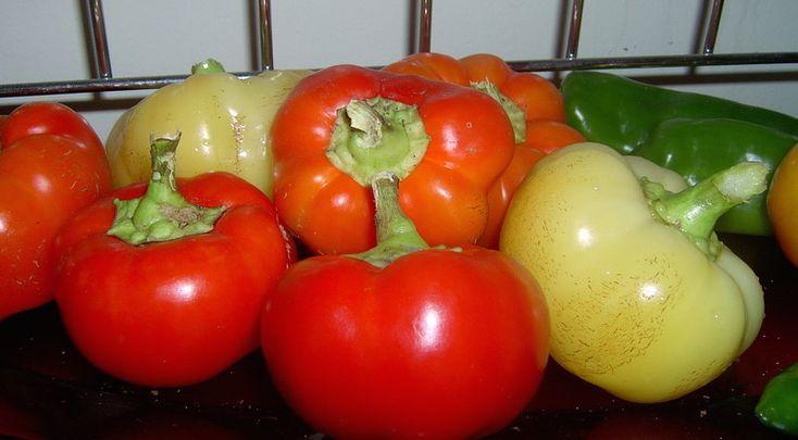 Befőttek, kompótok, savanyúság receptek » Blog Archive » Olajos paprika…