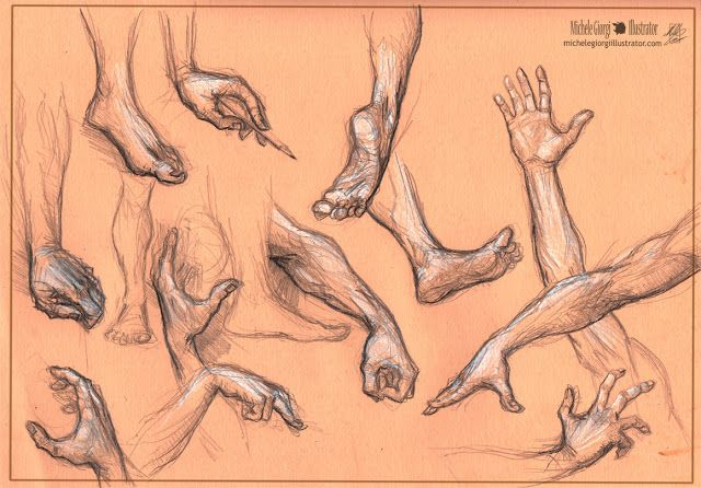 Michele Giorgi Illustrator                     : Anatomy sketches!
