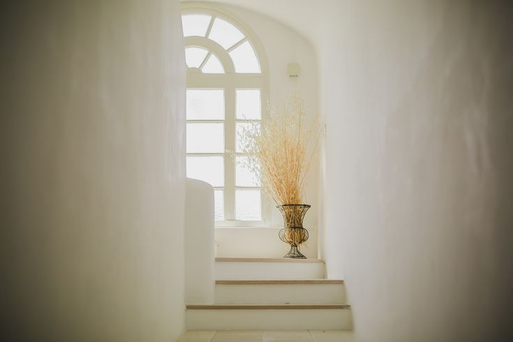 LUCA + FEDERICA - The Imaginative Studio