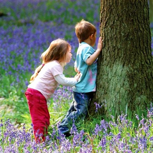 Hide Seek Kids: 272 Best Images About Hide And Seek-Peek-a-Boo! On