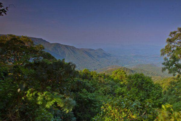 Agumbe - Crown Jewel of the Western Ghats  - Yahoo! Lifestyle India