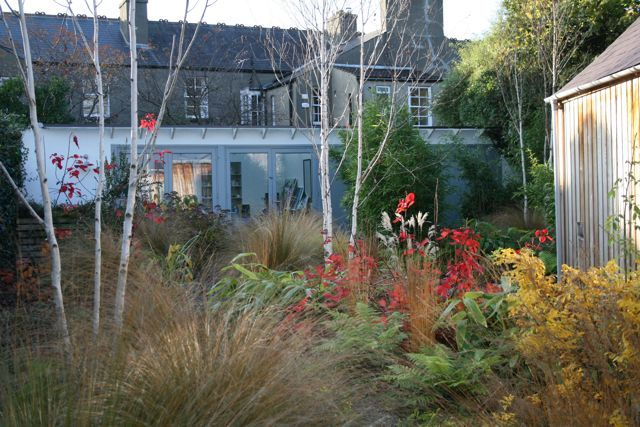 A garden we designed in Ranelagh, Co Dublin. This is a deliberately 'wild' section of the garden that leads to a painters studio: the perfect place to get away from it all.