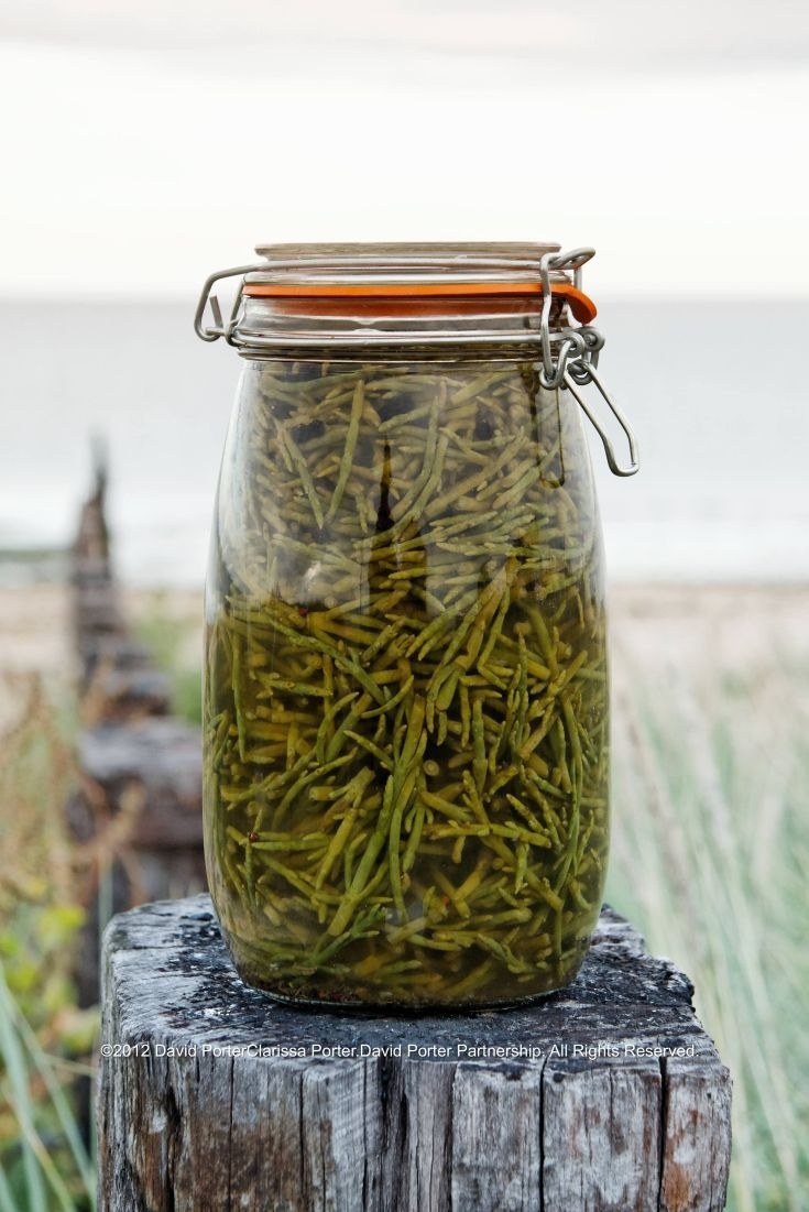 Pickled Samphire. Wild asparagus of the sea. Found along coastlines in Norfolk.