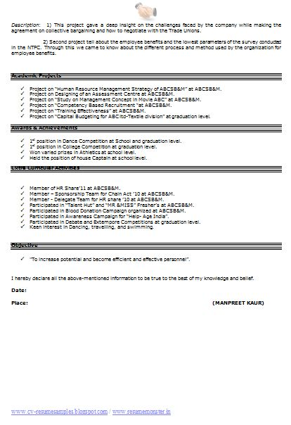 CV Resume Format (Page 2)
