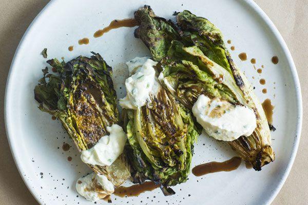 Grilled lettuce – Recipes – Bite