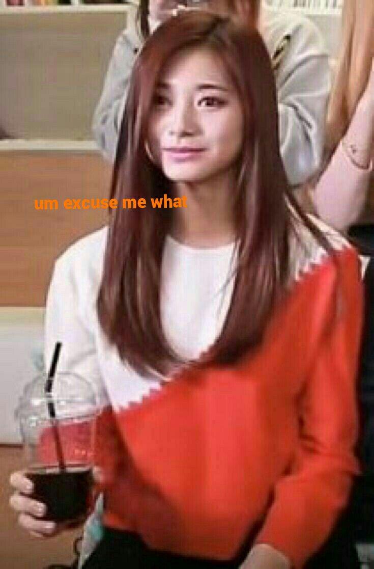 Pin Oleh Dahyun S Jawline Di Twice Memes Save It You Ll Need It