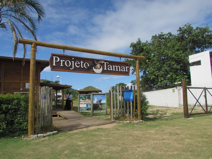 Projeto Tamar, Praia do Suá