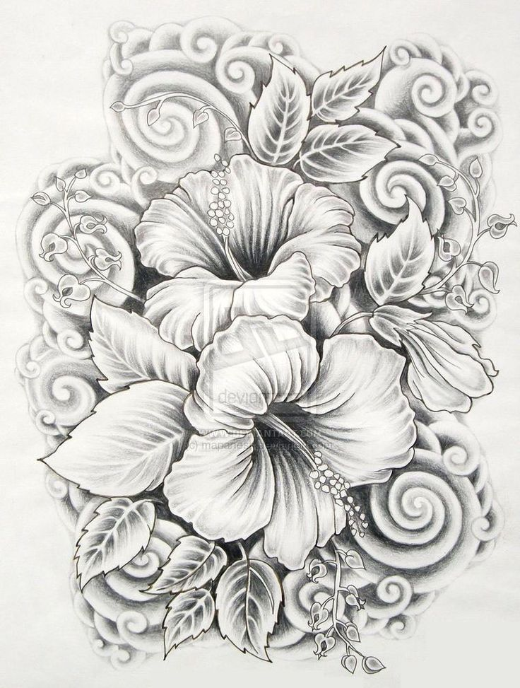 hawaii flowers drawings with no color Google Search