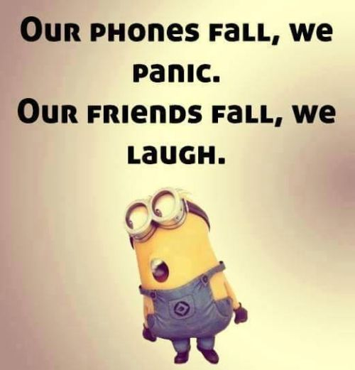 Our phones fall, we panic. Our friends fall, we laugh. Minion Despicable Me