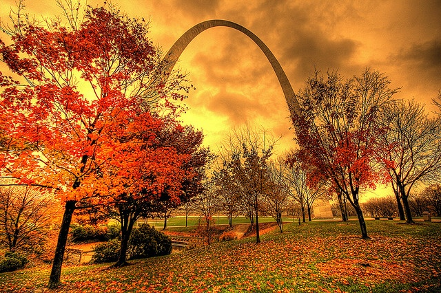 St. Louis - I wish I could have seen this in the fall <3 Love the Arch