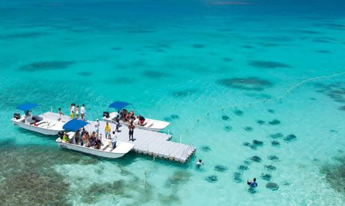 Stingray City, Antigua - Top 10 things to do in Antigua