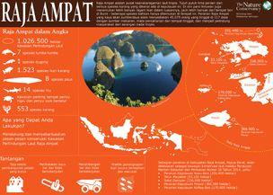 Raja Ampat_info_304