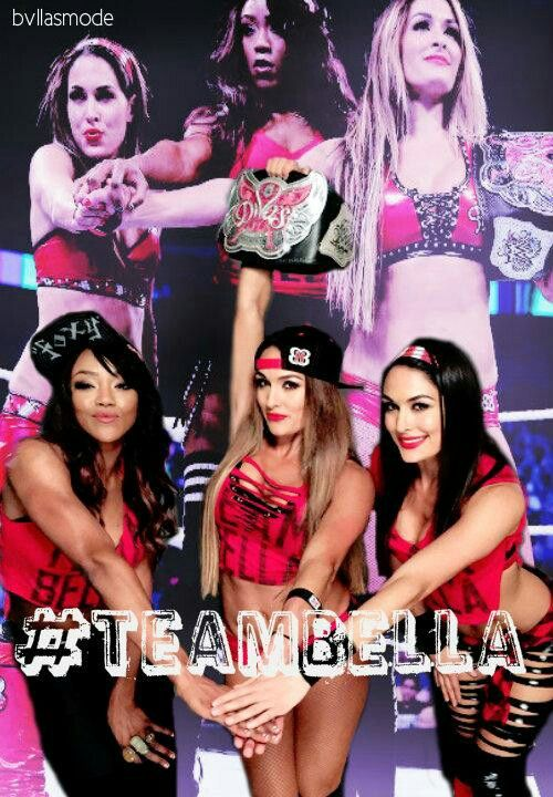 130 Miglior Team Bella Nikki, Brie e Alicia Fox Images On-3289