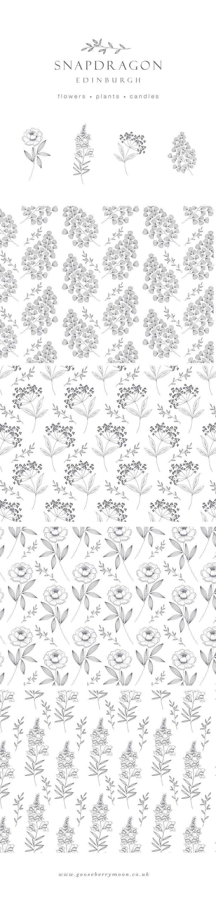 Logo, illustration and pattern design for florist Snapdragon Edinburgh