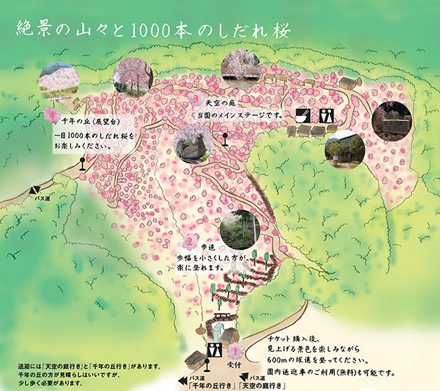 shidare-sakura.jp images 620sakuramap.jpg