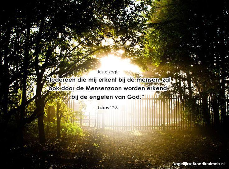 """Jezus zegt: """"Iedereen die mij erkent bij de mensen, zal ook door de Mensenzoon worden erkend bij de engelen van God."""" Lukas 12:8  #Belijden, #Jezus  https://www.dagelijksebroodkruimels.nl/lukas-12-8/"""