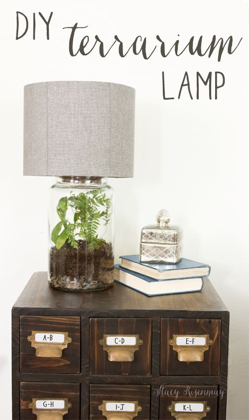 Easy DIY Terrarium Lamp | Stacy Risenmay