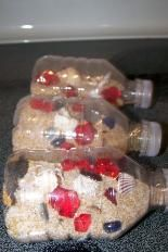 Pirate Theme for Preschool Pirate treasure bottles. http://www.greatestresourcechildcare.com