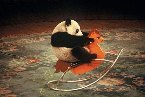 panda: Pandas Baby, Baby Pandas, Rocks Horses, Funny Pics, Rockers, Funny Pictures, Mornings Coff, Pandas Bears, Baby Animal