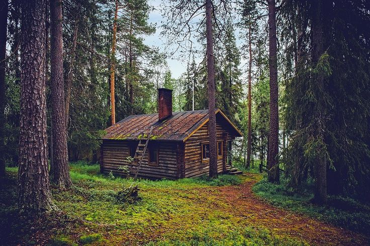 Log cabins have been enjoyed by Americans for literally hundreds of years and they are as loved now as they were centuries ago! There are many traditional styles that are common in the United State…