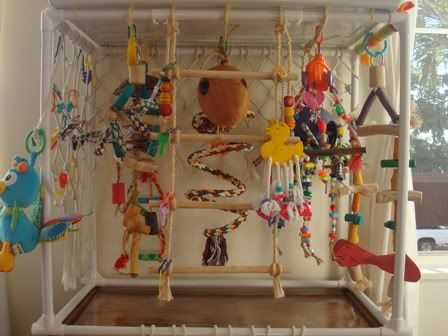 Diy homemade play gym some ideas aviaries for Diy jungle gym ideas