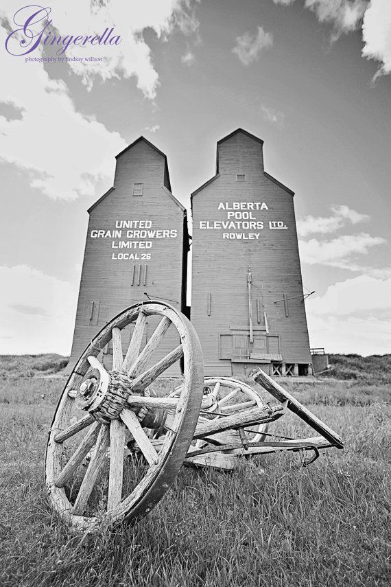 Rowley Alberta, Ghost Town, Grain Elevators, summer, Wall Art