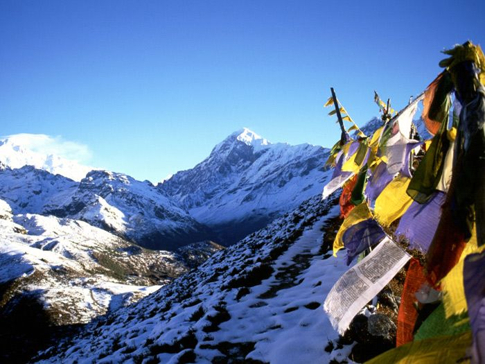 Himalaya could be a best tours and travels agency it's provide awe-inspiring tours and trekking packages Trekking in Nepal and make your tours unforgettable.