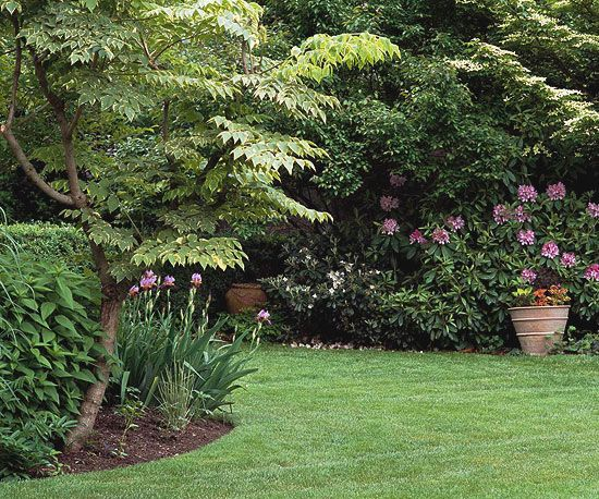 Find out everything you need to know about repairing your yard with this helpful guide. Get the answers to all of your landscaping questions here.