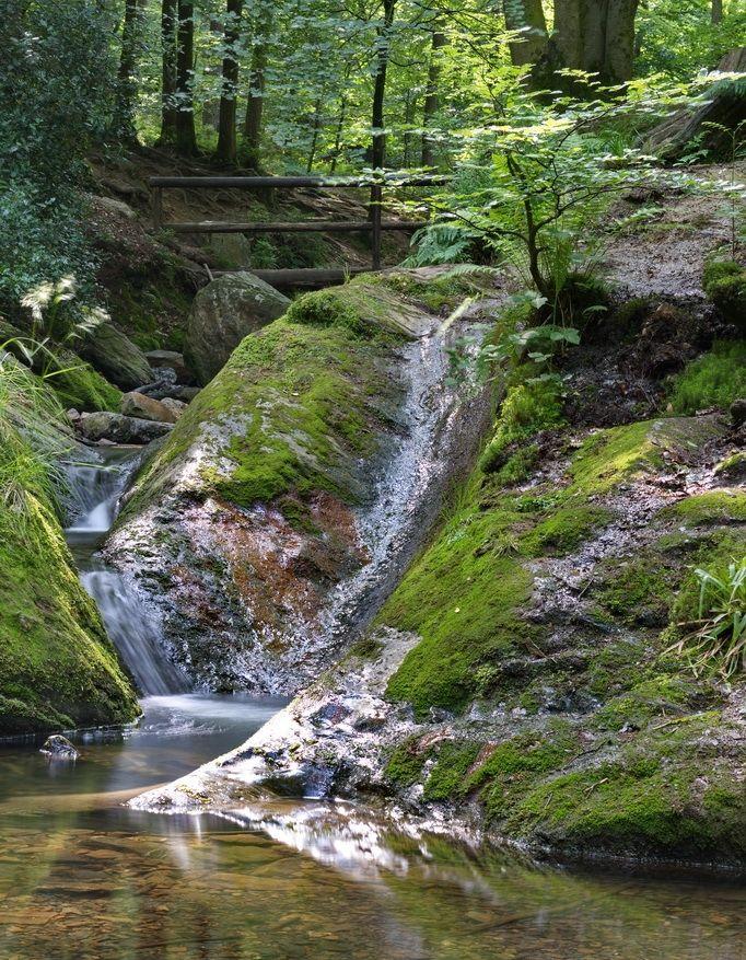 Je hoeft er niet ver voor de grens over. Belgisch wildste beek de Ninglinspo stroomt tussen de grotten van Remouchamps en de waterval van Coo. Plek voor een avontuurlijke wandeling langs rotsblokken en tientallen kleine watervallen. De Ninglinspo is maar 3,5km lang maar daarin daalt ze wel bijna 200mtr. Onder de watervallen vind je vaak een 'bad', een ronde diepte …