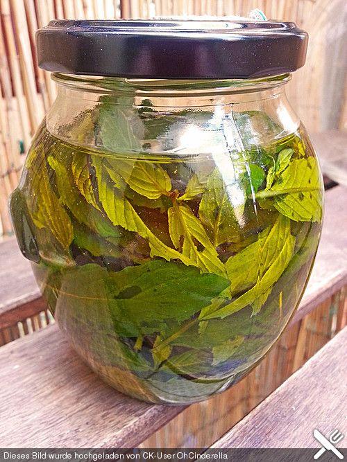 Minzöl DIY 1 HandvollMinze (Blätter)½ LiterOlivenöl  Zubereitung  Die Minzblätter in das Olivenöl geben und für 1 Monat an einem kühlen und dunklen Ort ziehen lassen. Danach die Minzblätter entfernen und das Öl abfüllen.