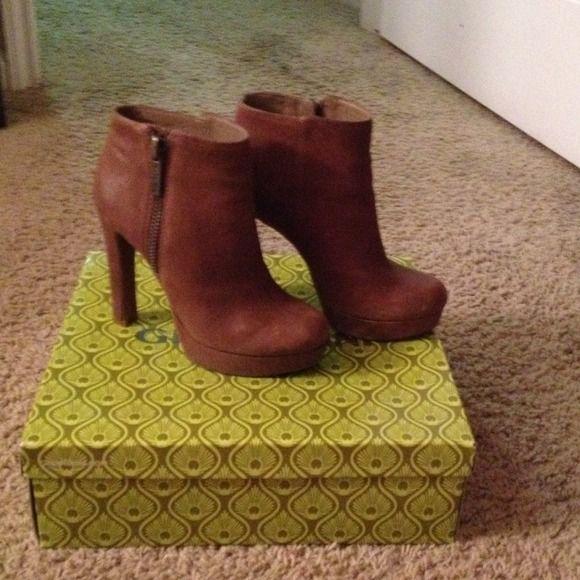 Gianni Bini boots Autumn taupe Gianni Bini Shoes