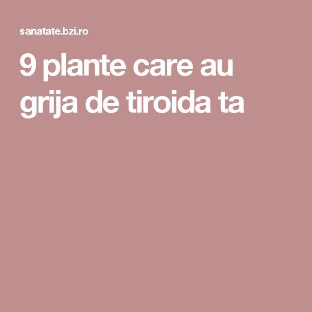9 plante care au grija de tiroida ta