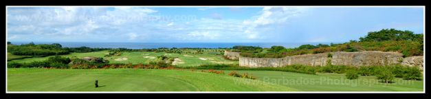 Golf in Barbados at the Green Monkey Golf Course, Sandy Lane Hotel.