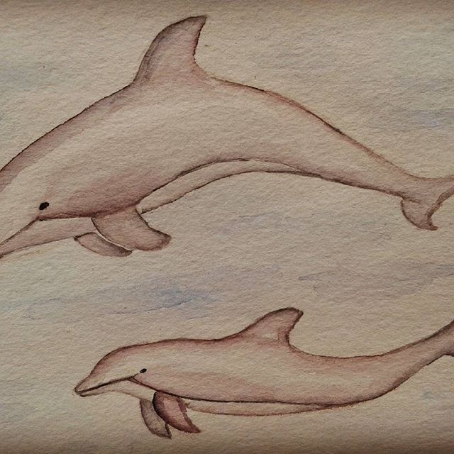 Doodling dolphins.♡ #watercolorpainting #illustration #dolphins